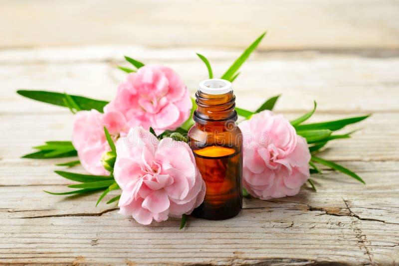 Petrolio essenziale di assoluto del garofano e fiori rosa sulla tavola di legno fotografia stock