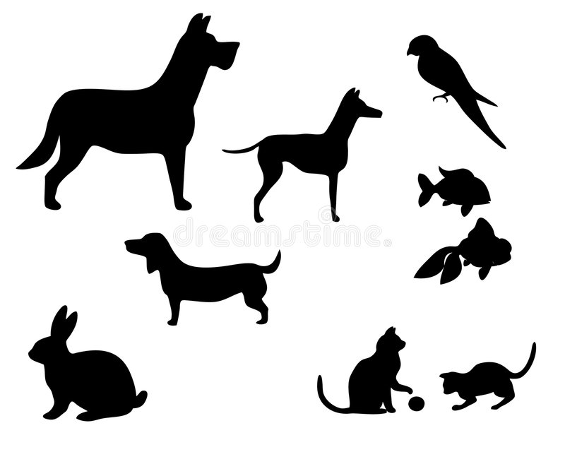 Pets. Vector illustration of various pets silhouettes
