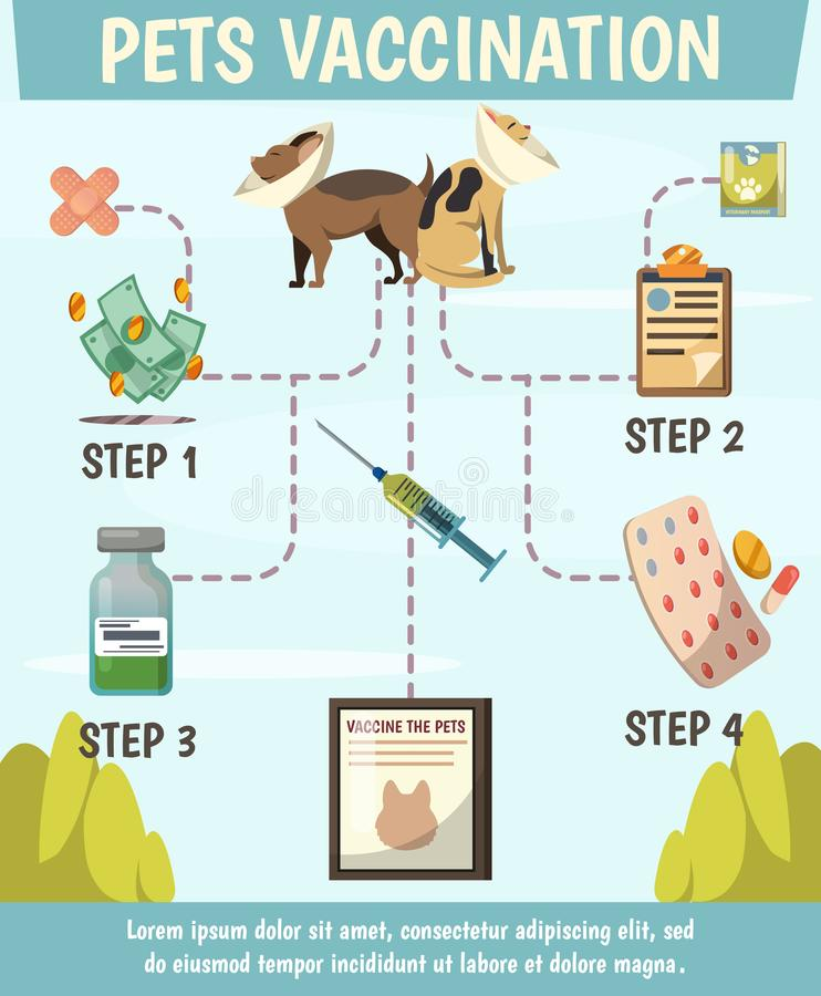 Pets Compulsory Vaccination Orthogonal Flowchart. Poster with 4 steps preventive care for optimal animals protection vector illustration vector illustration
