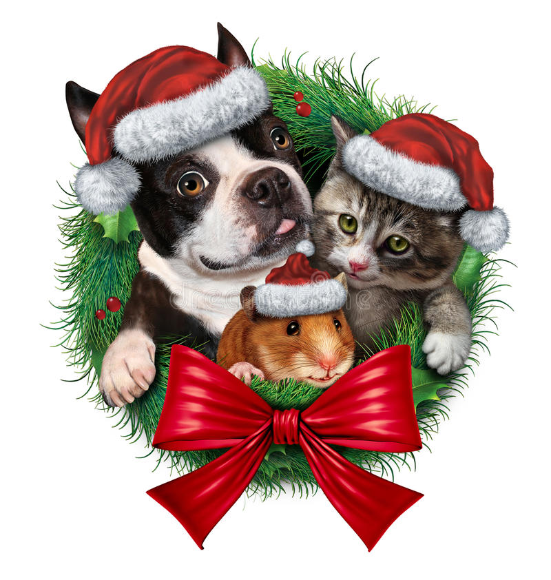 Pets Holiday Wreath. With a dog cat and hamster wearing Christmas hats as a symbol of veterinary medicine and pet store or animal adoption issues during the royalty free illustration