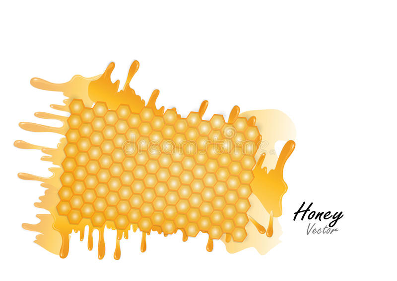 Pettine del miele ed e goccia su fondo bianco, illustrazione di vettore illustrazione vettoriale
