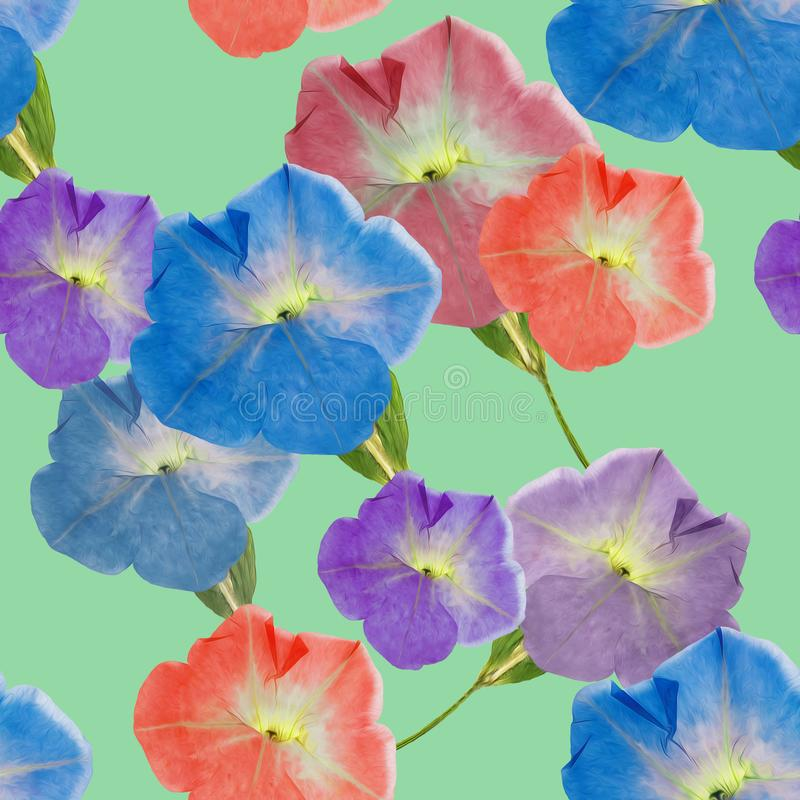 Petunia. Seamless pattern texture of flowers. Floral background, photo collage vector illustration