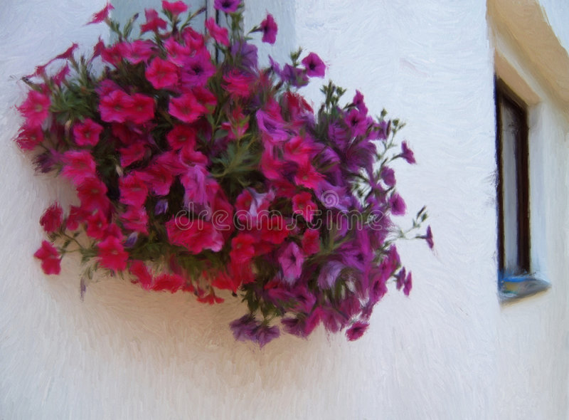 Download Petunia on the window stock illustration. Illustration of drawing - 8076920