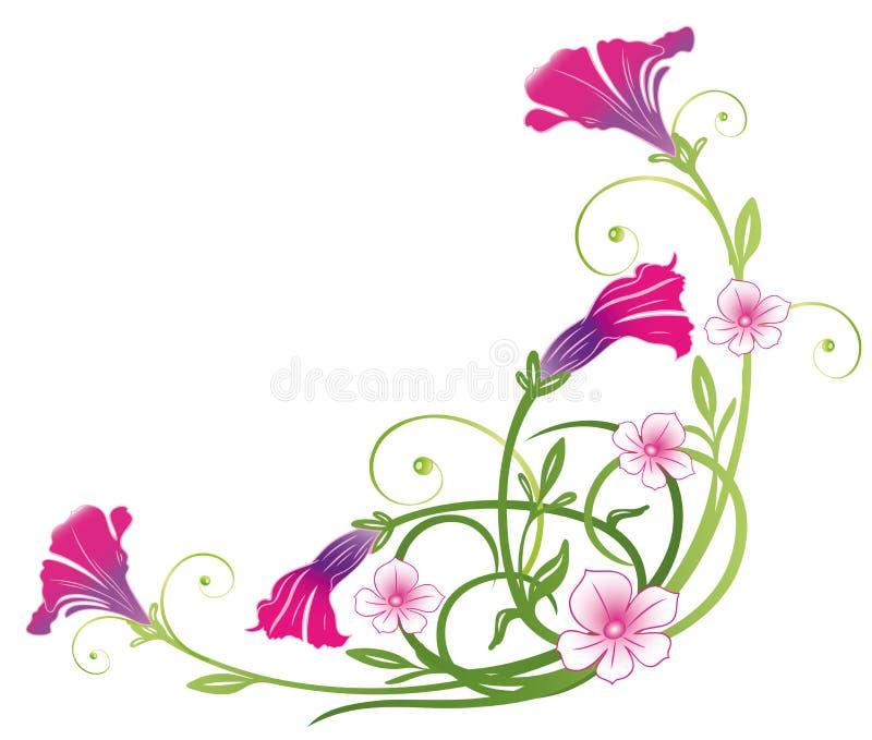 Petunien, Sommerblumen stock abbildung
