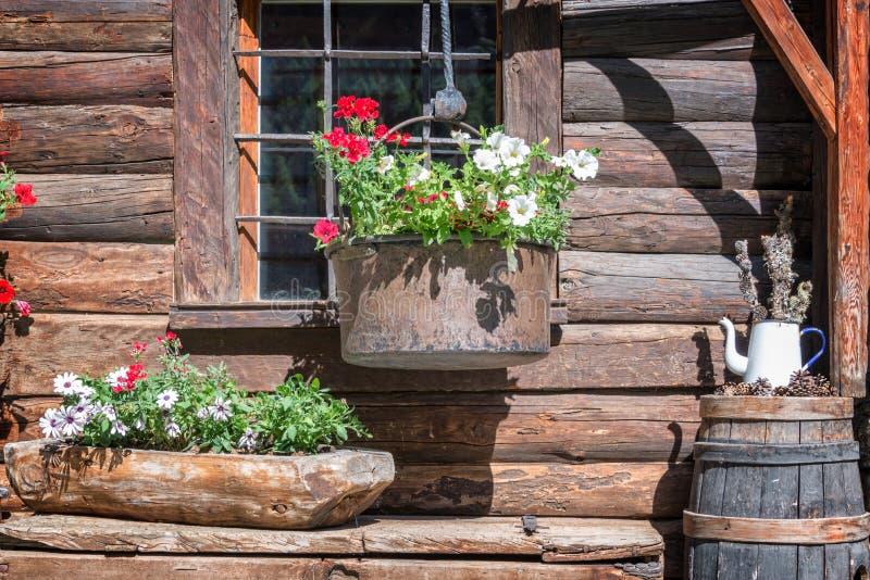 Petunienblumentöpfe auf dem Fenster eines hölzernen rustikalen Blockhauses in den Alpen, das Aostatal Italien lizenzfreie stockfotos