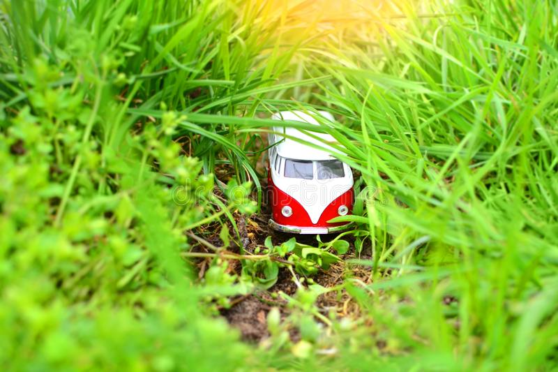 Peu autobus au milieu d'une verdure photos libres de droits