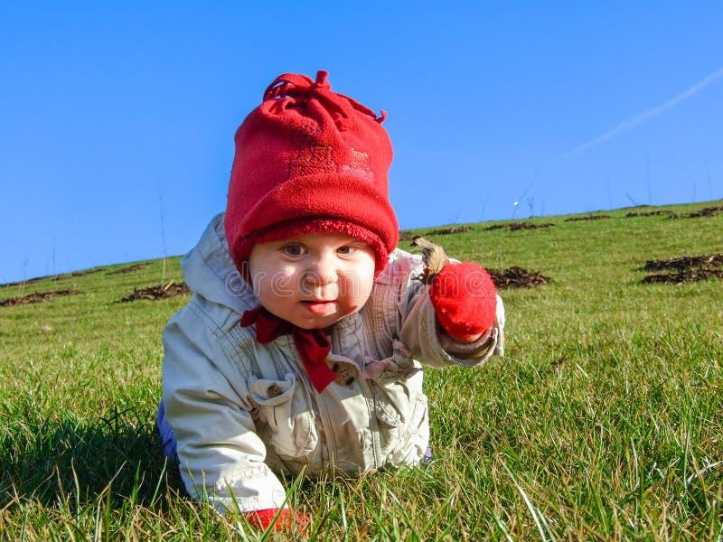 Peu bébé sur l'herbe donne une feuille photographie stock libre de droits