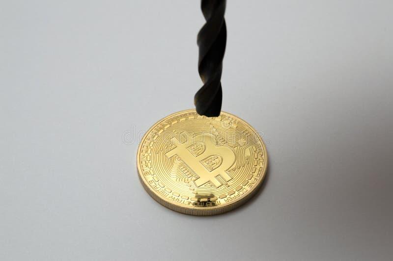 Peu d'or de bitcoin et de foret sur le fond blanc images libres de droits