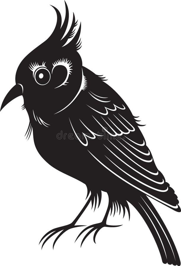 Peu Doiseau Noir De Dessin Animé Illustration De Vecteur