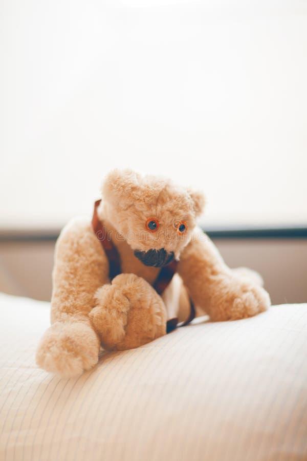 Peu d'ours de nounours mignon et adorable se reposant sur un oreiller, attendant quelqu'un pour caresser photos libres de droits
