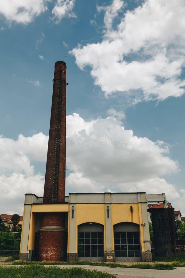 Peu d'usine de tuyau avec le ciel bleu et les nuages dans un jour ensoleillé - écologie et connexe ambiant photo libre de droits