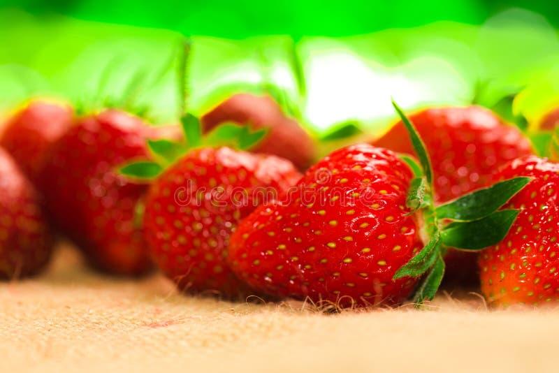 Peu de baies avec les fraises fraîches sur un tissu photos stock