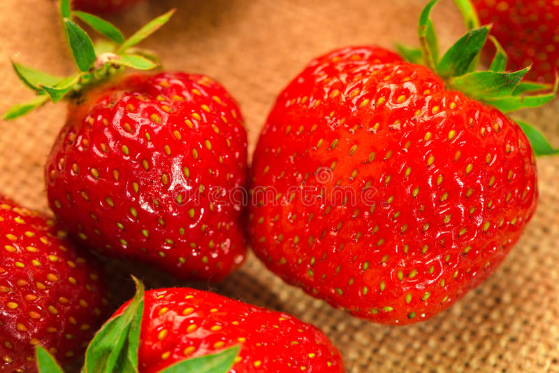 Peu de baies avec les fraises fraîches sur un tissu image libre de droits