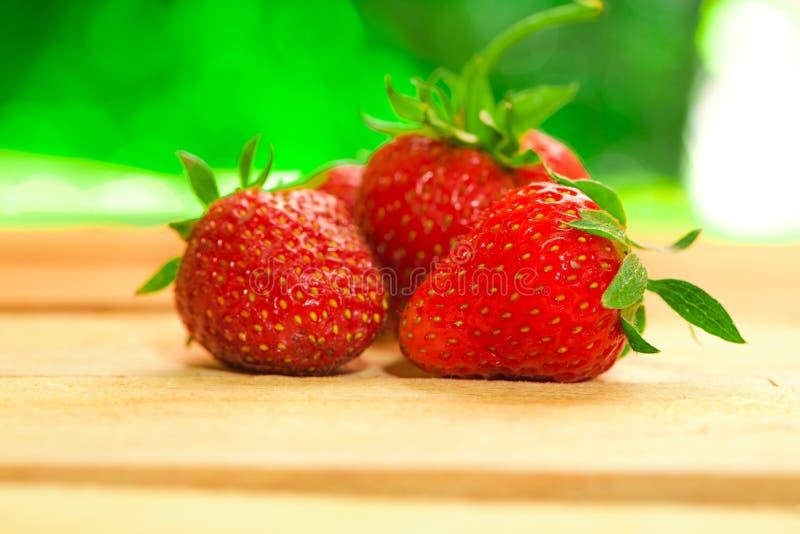 Peu de fraises fraîches de baies sur un fond brouillé photographie stock libre de droits