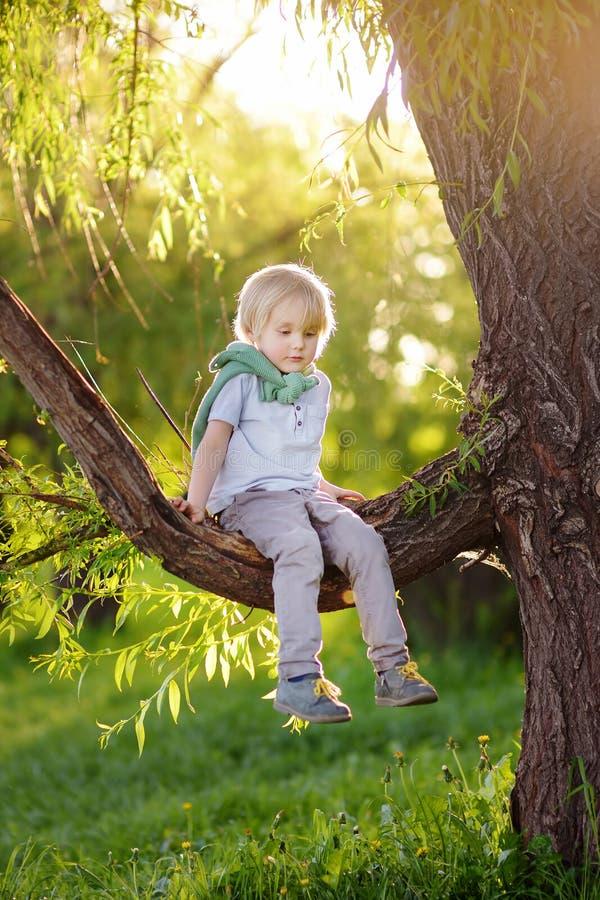 Peu de gar?on s'assied sur une branche de grand arbre et r?ve Les jeux de l'enfant Temps actif de famille sur la nature images stock
