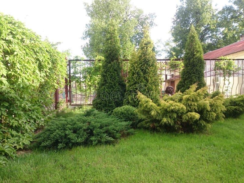 Download Peu de jardin photo stock. Image du été, nature, jardin - 76076570