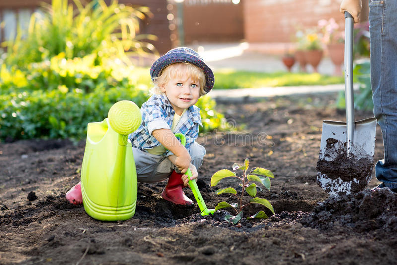 Peu de jardinier d'enfant plantant le pommier près de la maison image stock