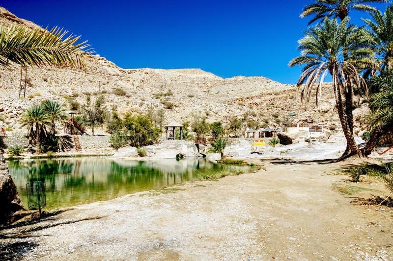 Peu de lac dans l'oasis de désert - Oman image libre de droits