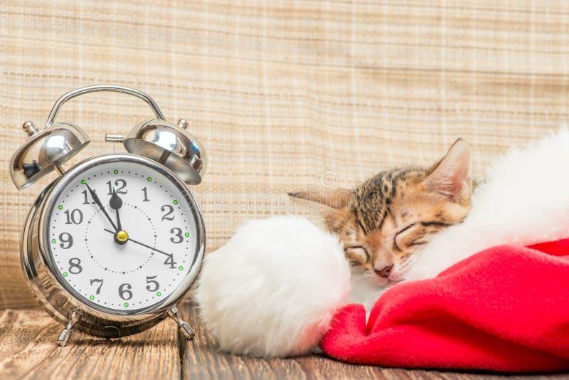 Peu de minou dort solidement dans le chapeau de Santa après photo libre de droits