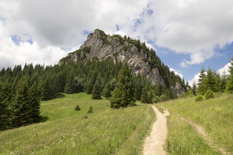 Peu de montagnes de Fatra, les montagnes de Lesser Fatra, parc national en été, bâti ont appelé Maly Rozsutec image stock