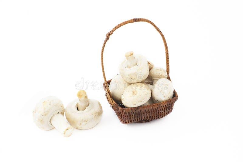 Peu de panier avec des champignons de couche image stock