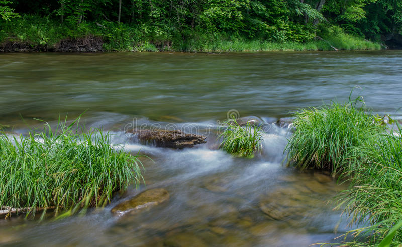 Peu de rivière de Beaverkill - courant célèbre de truite à New York photos stock
