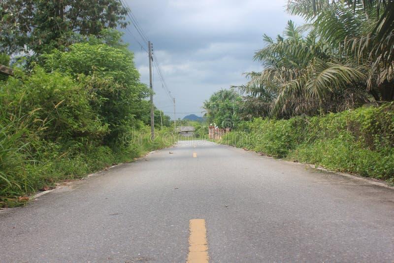 Peu de route photo libre de droits