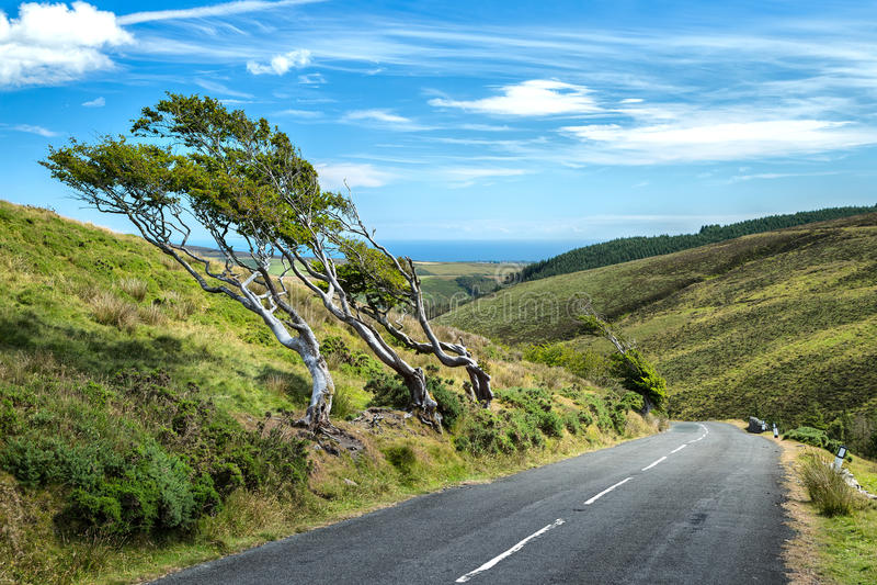 Peu de route de montagne photos libres de droits