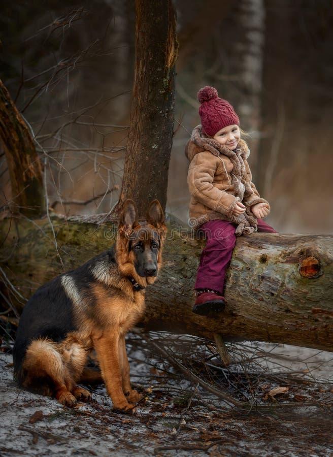 Peu fille avec le 6ème chiot de mois de berger allemand au premier ressort photo libre de droits