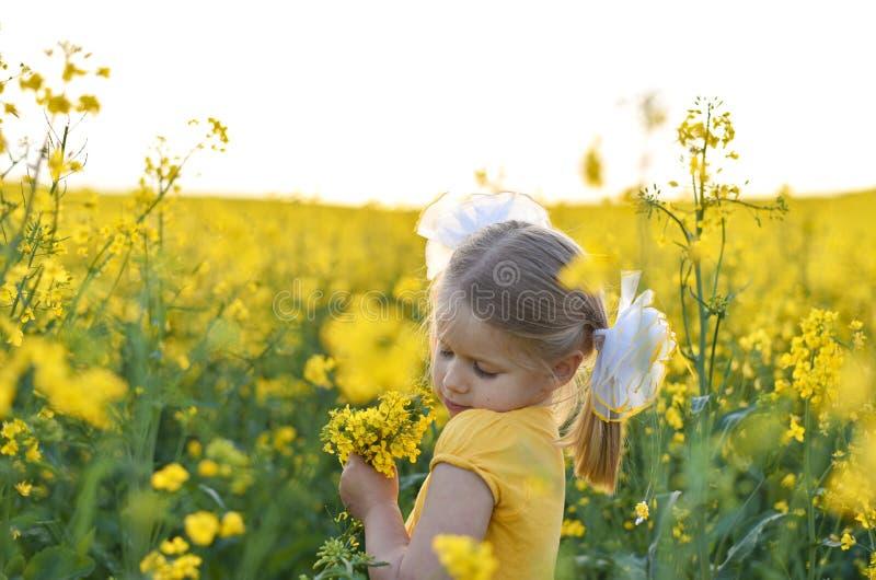 Peu fille romantique dans le domaine avec les fleurs jaunes photographie stock libre de droits