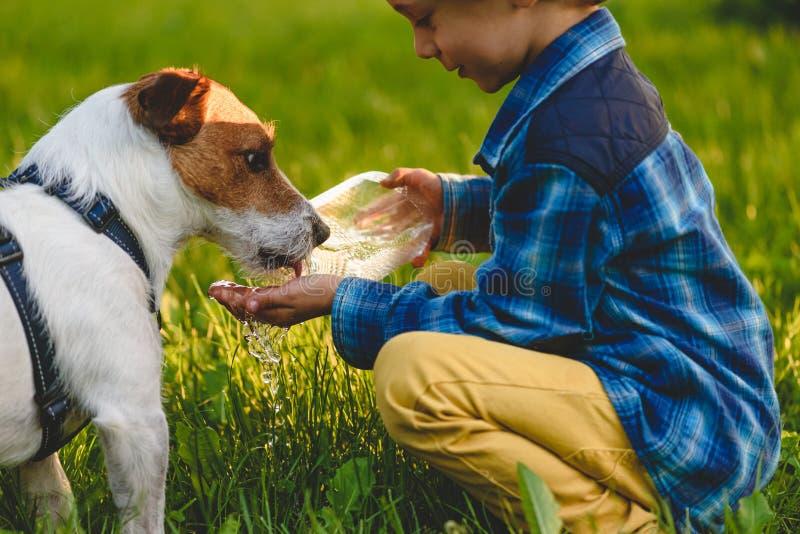 Peu garçon arrosant son chien à la promenade au jour d'été ensoleillé image libre de droits