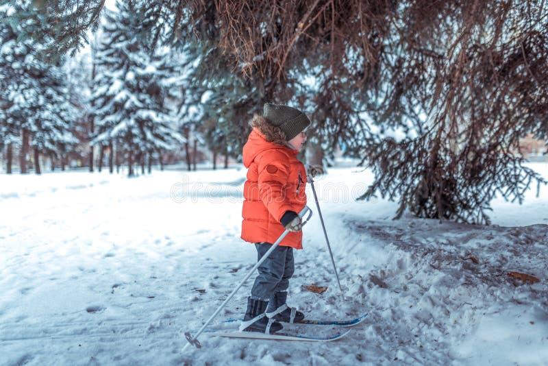 Peu garçon est 3-4 années, les skis de premières étapes des skis des enfants d'hiver, image active des enfants D?rives de neige d photos stock