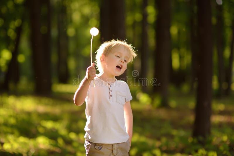 Peu garçon jouant avec le duvet de pissenlit Effectuer un souhait photo libre de droits