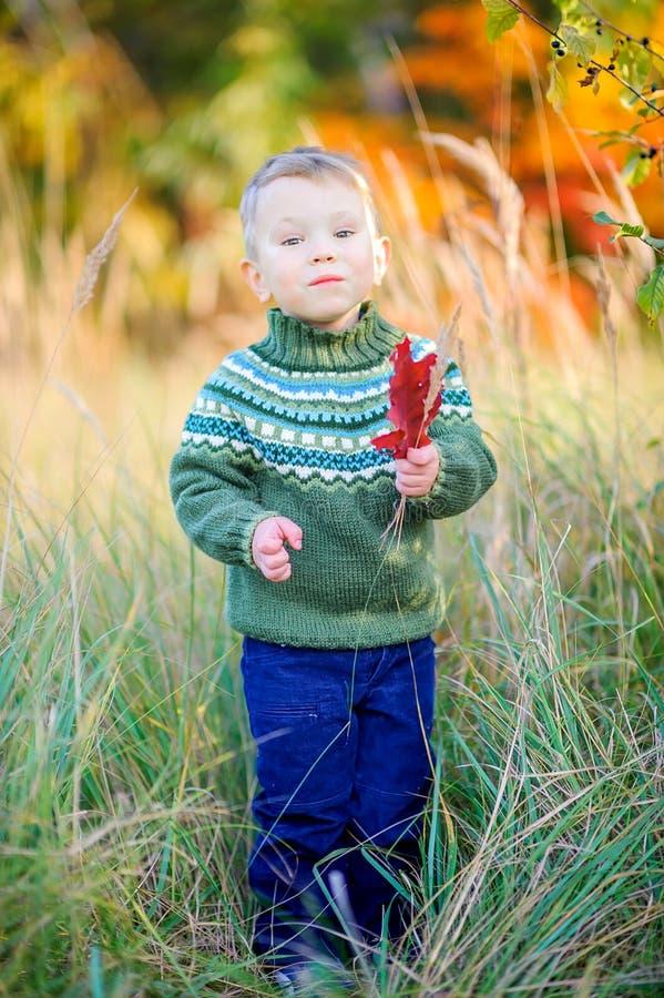 Peu garçon marche dans la forêt d'automne photos stock