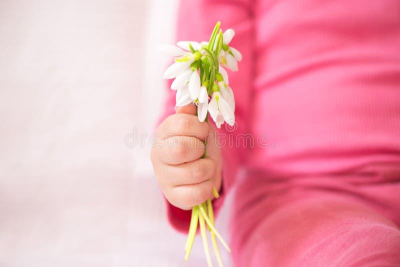 Peu la main d'enfant tenant un groupe de perce-neige photos stock
