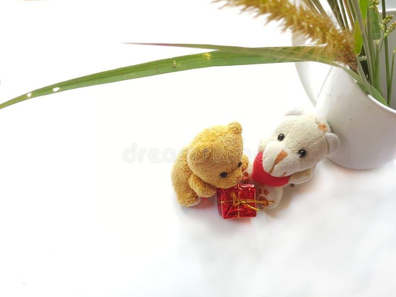 Peu ours avec le jour heureux d'amants Concept de jour du ` s de Valentine image stock