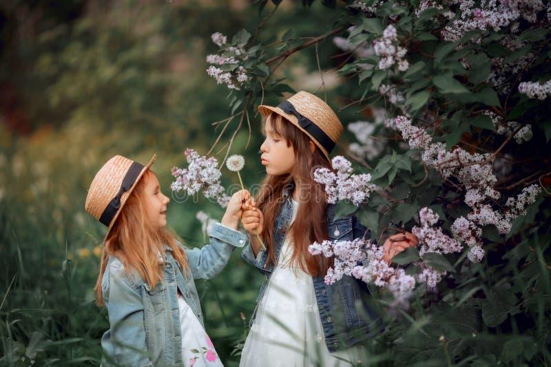 Peu portrait ext?rieur de soeurs pr?s d'arbre lilas photographie stock