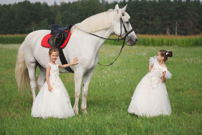 Peu princesse avec le cheval blanc dans le domaine d'été images stock