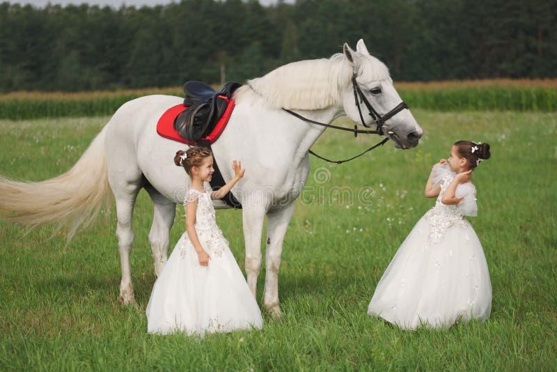 Peu princesse avec le cheval blanc dans le domaine d'été image stock