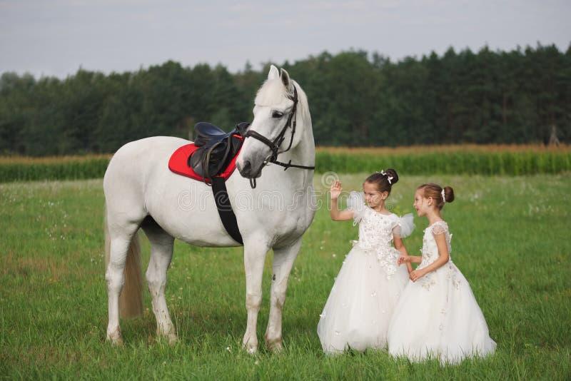 Peu princesse avec le cheval blanc dans le domaine d'été photo libre de droits