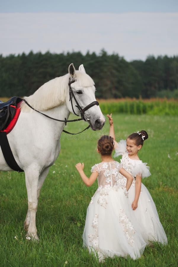 Peu princesse avec le cheval blanc dans le domaine d'?t images stock