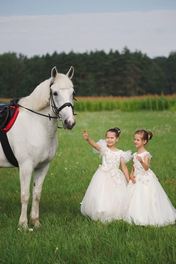 Peu princesse avec le cheval blanc dans le domaine d'?t photos stock