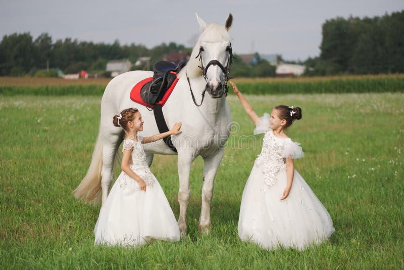 Peu princesse avec le cheval blanc dans le domaine d'?t image libre de droits