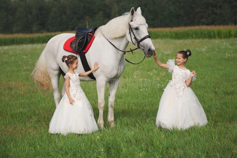 Peu princesse avec le cheval blanc dans le domaine d'?t photos libres de droits