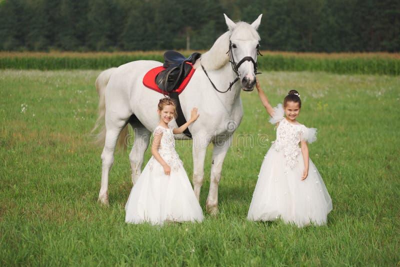 Peu princesse avec le cheval blanc dans le domaine d'?t photographie stock libre de droits