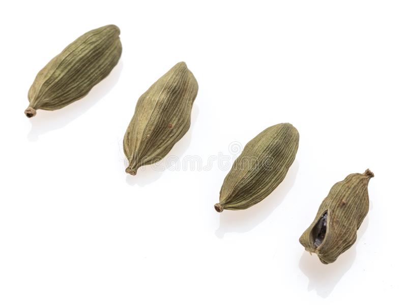 Peul vier van kardemom royalty-vrije stock afbeelding