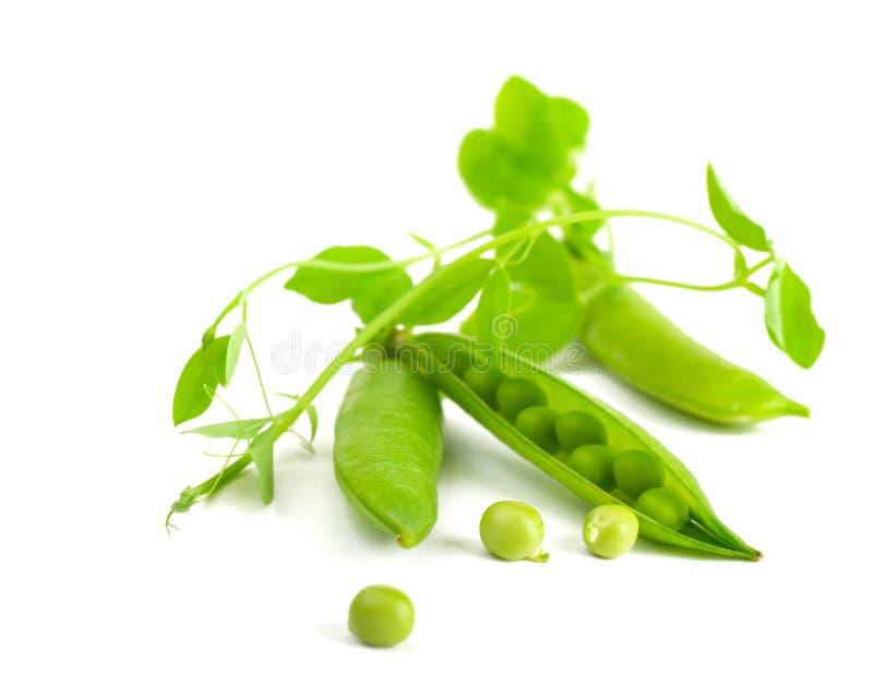 Peulen van groene erwten stock foto