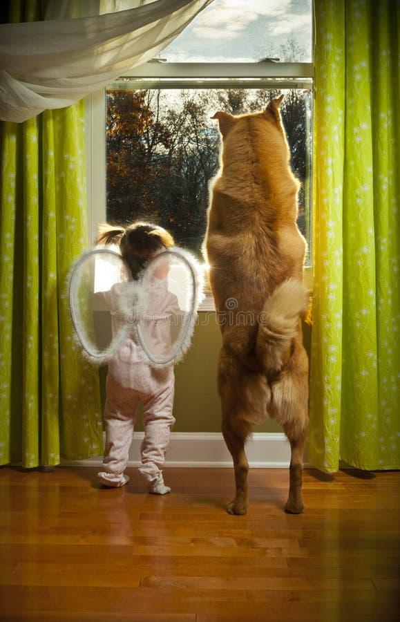 Peuter en hond die uit het venster kijken