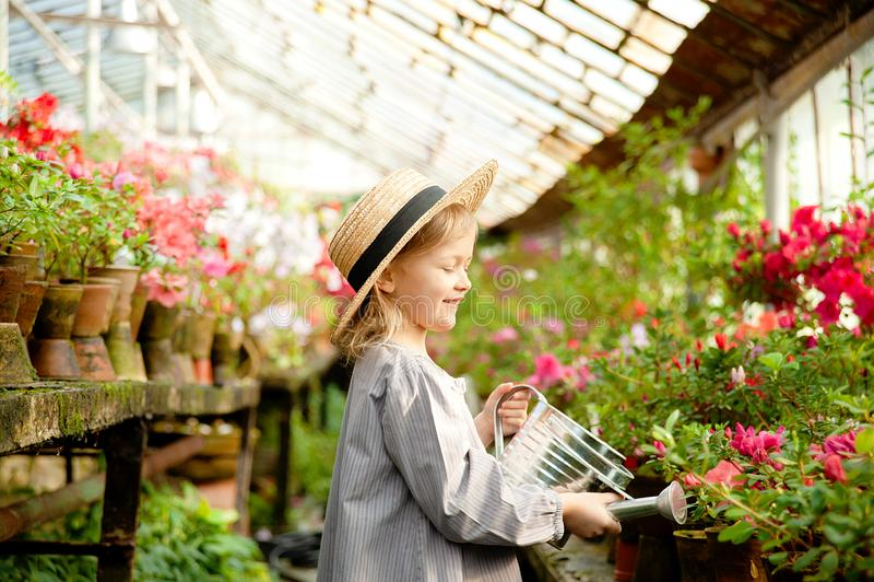 Peuter met bloemmand Meisje die roze bloemen houden stock afbeeldingen