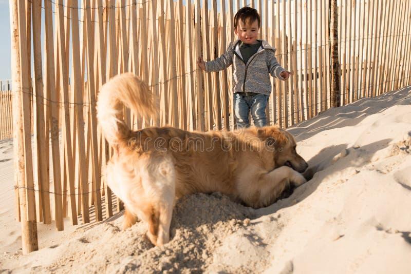 Peuter met hond op het strand royalty-vrije stock foto's